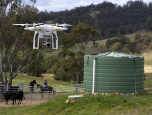 Monitoring Dairy Cattle Drones