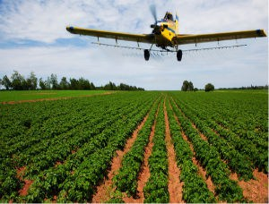 <strong>Agricultural Drones</strong>