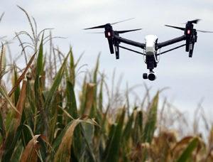 Drone Monitoring Crops